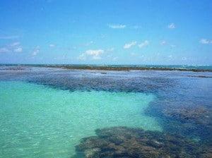 Praia de São José da Coroa Grande 3- albergue em porto de galinhas